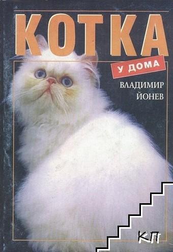 Котка у дома