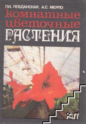 Комнатные цветочные растения