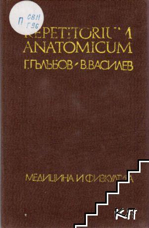 Repetitorium anatomicum