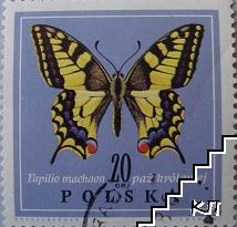 Пеперуди - Papilio machaon