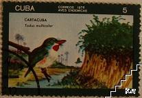 Птици - Cartacuba