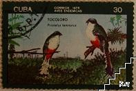 Птици - Tocoloro