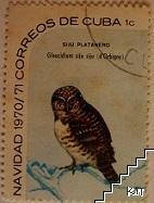 Птици - Siju platanero