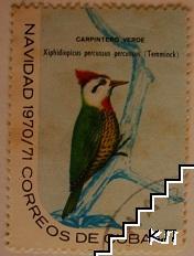 Птици - Carpintero verde