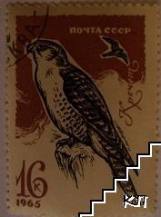 Птици - Кречет
