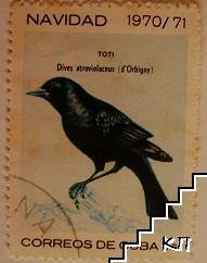 Птици - Toti