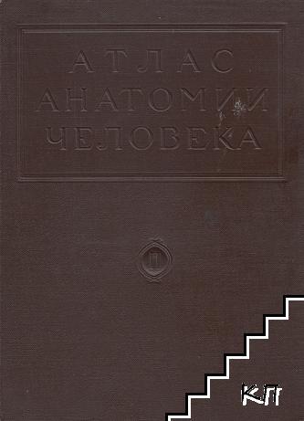 Атлас анатомии человека в пяти томах. Том 2: Учение о мышцах