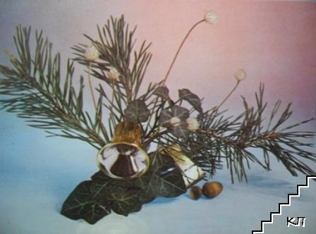 Борова клонка (Сабазий), бръшлян, жълъд, шест сухи цвята, камбанка и кутийка