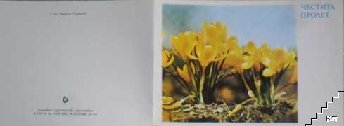 Минзухари - група, жълти