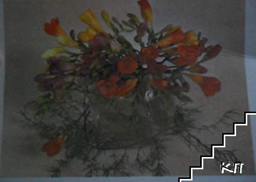 Фрезия - букет от жълти, оранжеви, виолетови цветове със зелени клонки в прозрачна ваза