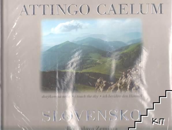 Attingo caelum - Slovensko