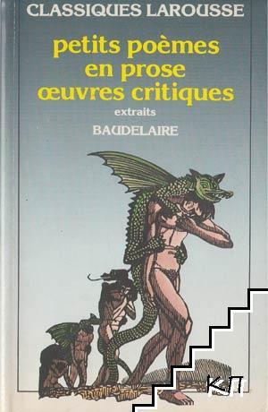 Baudelaire. Petits poèmes en prose
