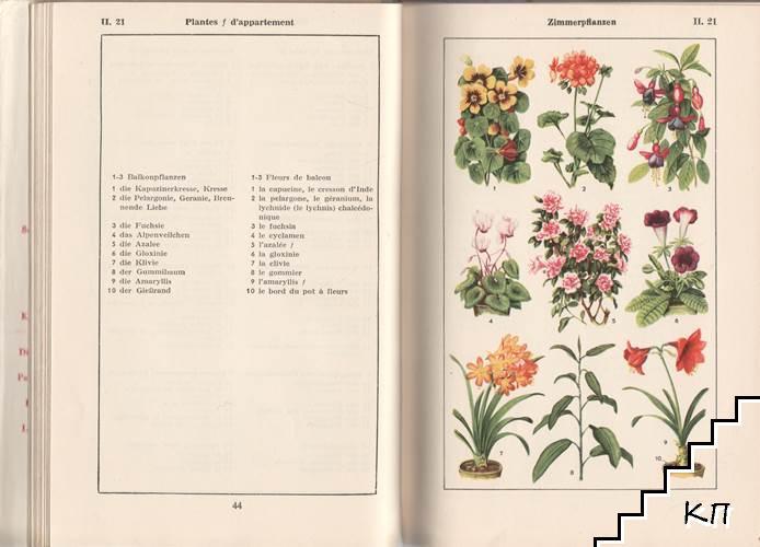 Bildworterbuch. Deutsch und franzosisch (Допълнителна снимка 1)