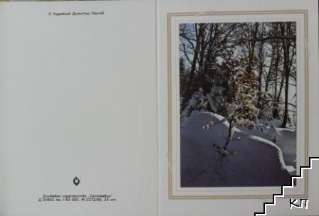 Зимен изгрев в гора