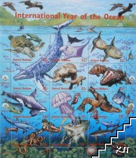 International Year of the Ocean