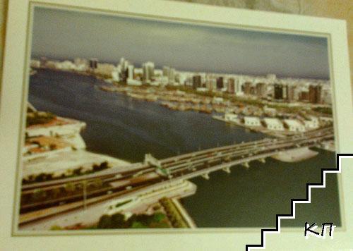 Dubai. Maktoum Bridge