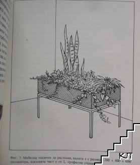 Прозорци градини (Допълнителна снимка 3)
