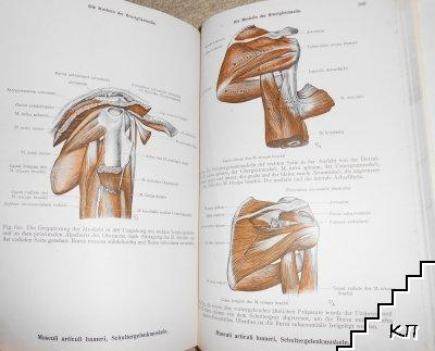 Toldts Anatomischer Atlas für Studierende und Ärzte. Band 1 (Допълнителна снимка 3)