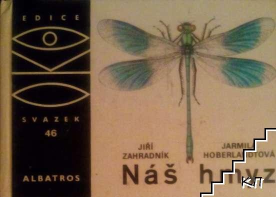 Nás hmyz