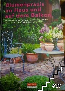 Blumenpraxis im Haus und auf dem Balkon