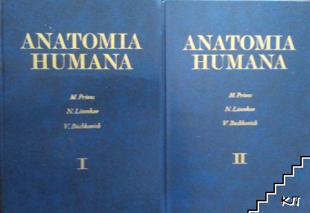 Anatomia humana. Tomo 1-2