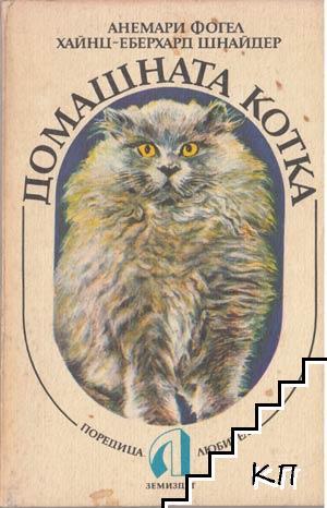 Домашната котка