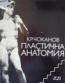 Пластична анатомия