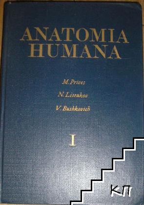 Anatomia Humana. Tomo 1