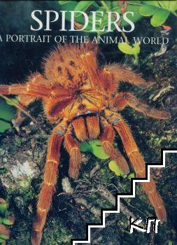 Spiders: A Portrait of the Animal World