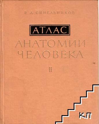Атлас анатомии человека в трех томах. Том 2: Учение о внутренностях и сосудах