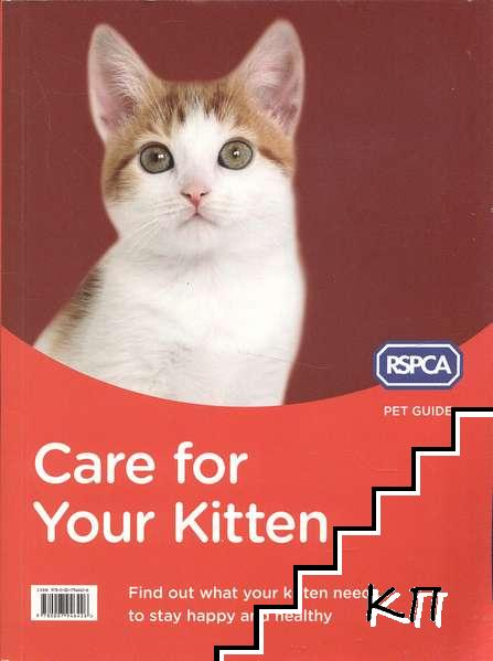 Care for Your Kitten: Find out what your kitten needs to stay happy and healthy