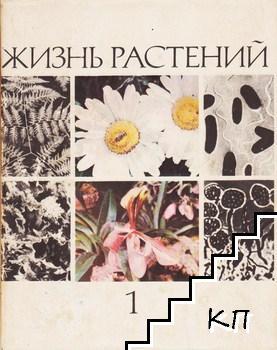 Жизнь растений. Энциклопедия в шести томах. Том 1: Введение. Бактерии и актиномицеты