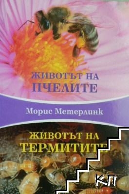 Животът на пчелите. Животът на термитите