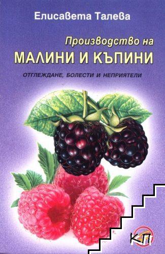 Производство на малини и къпини