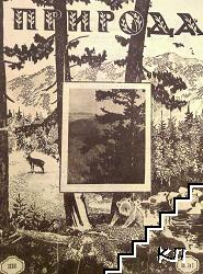 Природа. Кн. 2-3 / 1933
