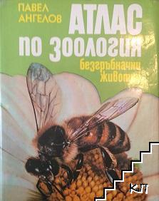 Атлас по зоология: Безгръбначни животни