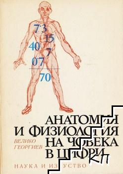 Анатомия и физиология на човека в цифри