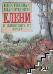 Една година с благородните елени и животните от гората