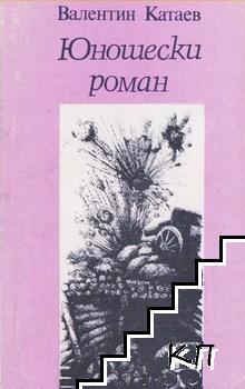 Юношески роман