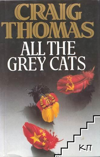 All the Grey Cats