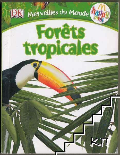 Forets tropicale