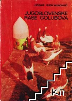 Jugoslovenske rase golubova