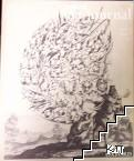 Oxford art journal. Vol. 37. № 2 / 2014