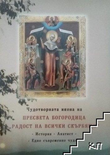 """Чудотворната икона на Пресвета Богородица """"Радост за всички скърбящи"""""""