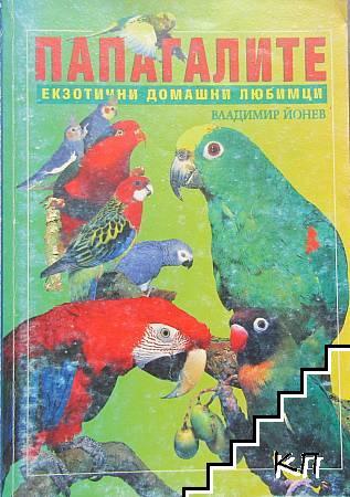 Папагалите - екзотични домашни любимци