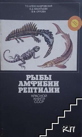 Рыбы, амфибии, рептилии