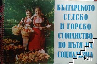 Българското селско стопанство по пътя на социализма