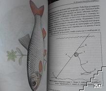 Риболовът без тайни. Том 1: Хищници
