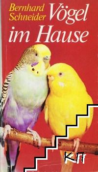 Vögel im Hause