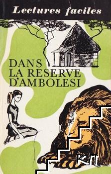 В заповеднике амболези / Dans la reserve D'Ambolesi